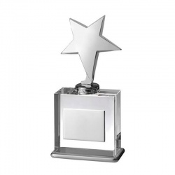 Clear Glass Star Award TZ018